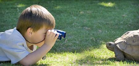 روانشناسی کودک,کودک خلاق,افزایش یادگیری کودک